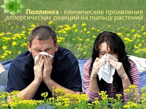 Аллергия. Слезы среди лета.